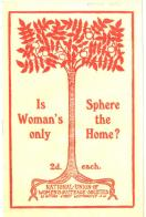 Is woman's only sphere the home